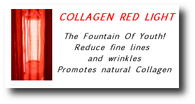 Collagen Bed
